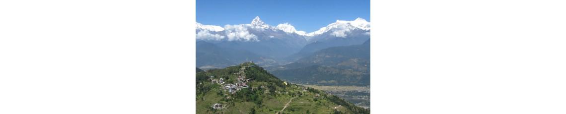 Nepal February 2022